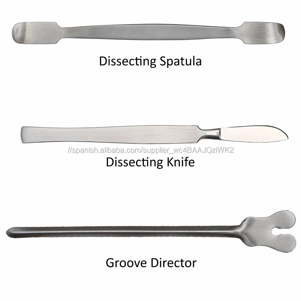 Anatomía Biología De Diseccion/instrumentos Quirúrgicos set con ...