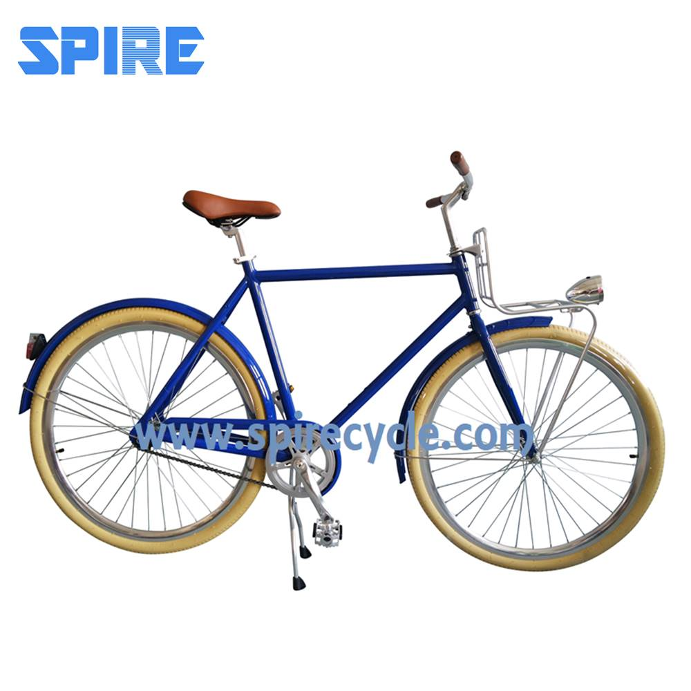Customized affordable single speed urban city bike