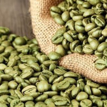 Brazil Organic Raw Arabic Green Coffee Beans Wholesale Buy Raw