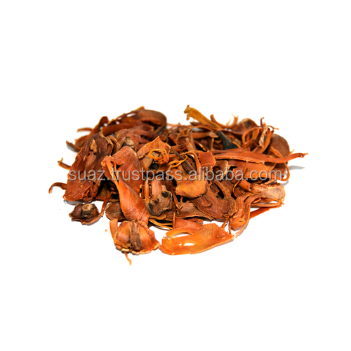 Mace,Javitri - Buy Major Mace,Drum Major Mace,Mace Flower Product on  Alibaba com