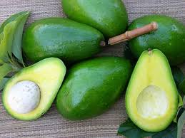 Wholesale Fresh Avocado from Vietnam - High Standard