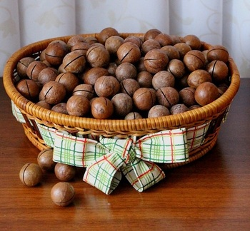 Raw Macadamia Nuts Best Prices