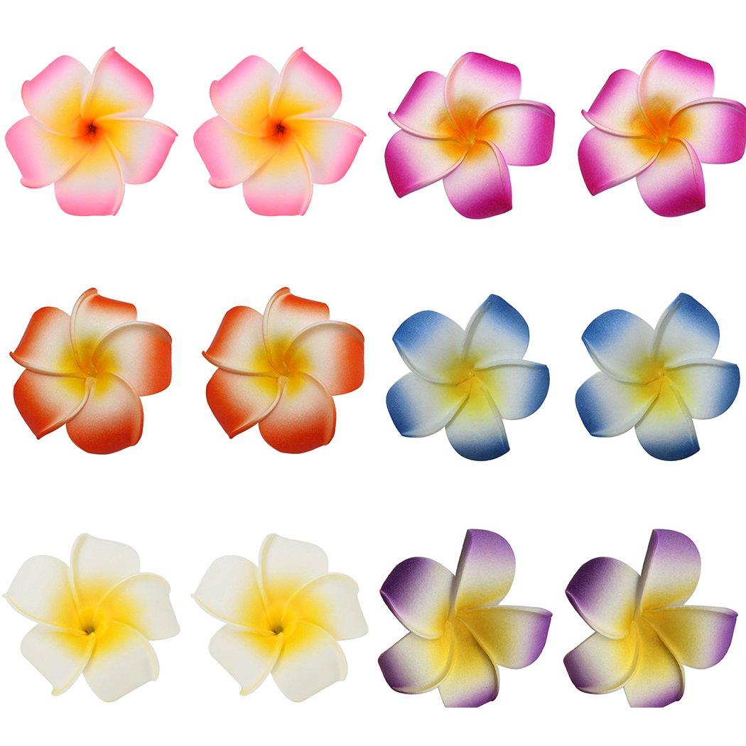 Cheap india hawaiian foam flower hair clips find india hawaiian get quotations fascigirl 12 pieces hawaiian plumeria flower hair foam hawaii hair clips izmirmasajfo
