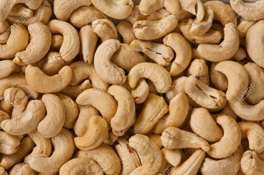 Quality Cashew Nut With Good Price