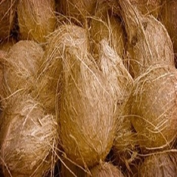 Indian Fresh Mature Coconut Export In Container/semi - Husked Coconuts -  Buy Fresh Coconut In Bag,Coconuts With Husk,Coconut In Tamilnadu Product on