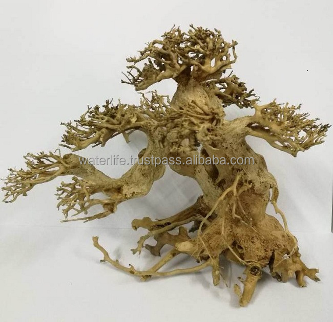 Bonsai Natural Driftwood
