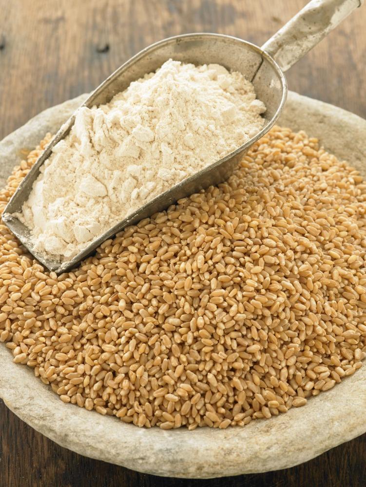 Wheat Grain (13.5 Protein)