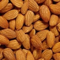 High Quality Organic Raw Almonds Nuts from Philippines at Competitive Price