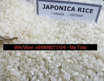best sale japonica sushi rice newest crop