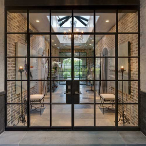 Modern unique villa front glass entry door single pivot doors