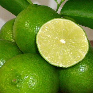 FRESH SEEDLESS LIME // GREEN LEMON_GOOD QUALITY _ FROM THAILAND