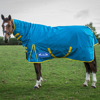 New Horse Winter Rugs 2017 The