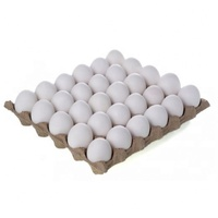 Fresh Style and Table Egg Variety Farm Fresh Chicken Table Eggs Brown and White Shell Chicken Eggs