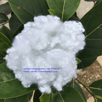 Viet Nam Hollow Conjugated Siliconized Polyester Staple Fiber 7D/15D Good Quality