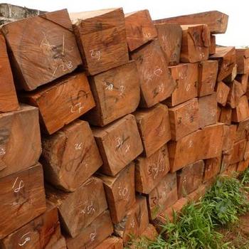 Fabulous Afzelia Africana - Buy Tropical Holz,Squared Log,Luft Getrocknet FB25