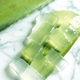 HIGH QUALITY 100% FRESH NATURAL ALOE VERA/ NATA DE COCO WITHOUT SKIN