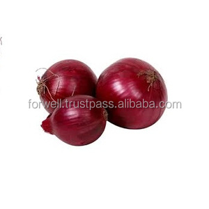 Wholesale Fresh Onion/Yellow Onion/red onion exporters
