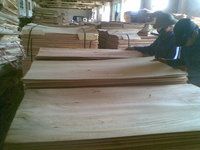 CHEAP PRICE - CORE VENEER FOR PRODUCING PLYWOOD