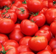 Ferme <span class=keywords><strong>Tomates</strong></span> Rouges Fraîches