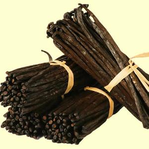 Vanilla Beans Wholesale