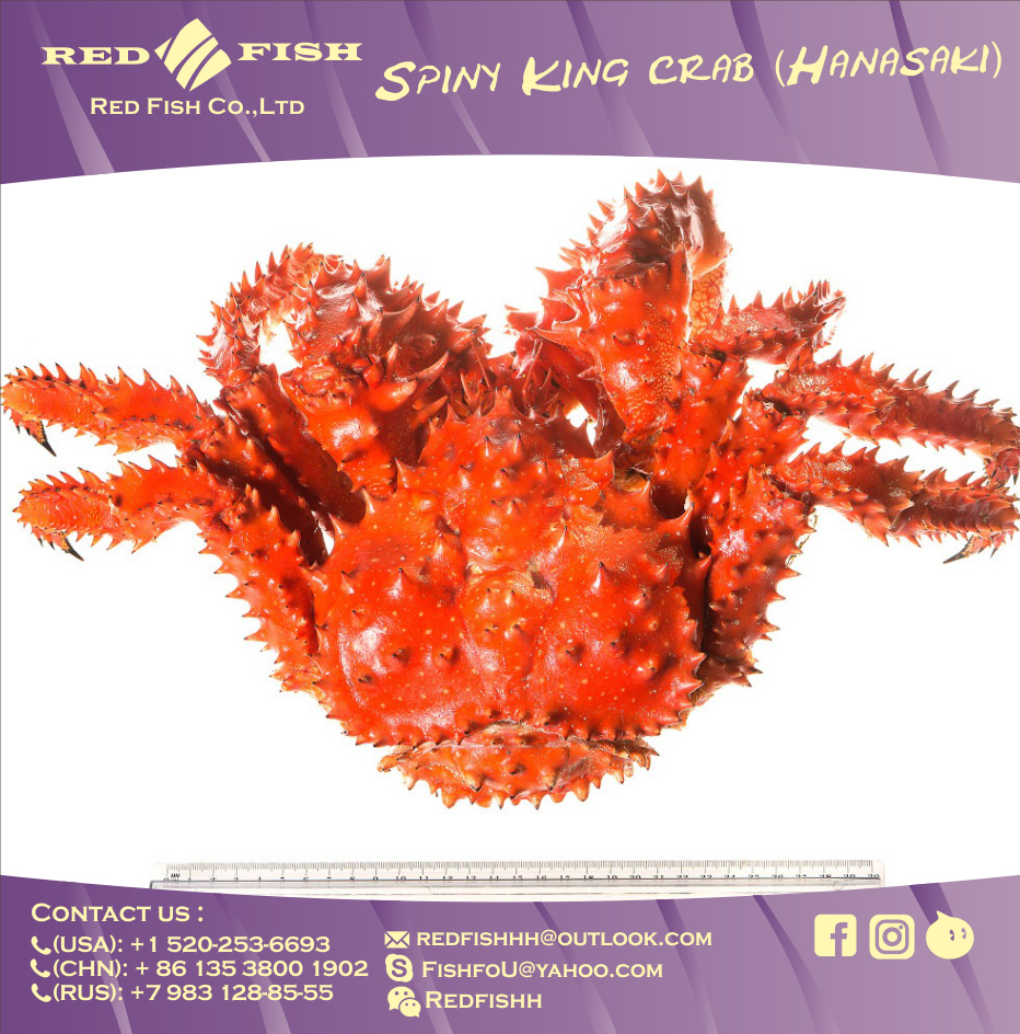 Russian Frozen King Crab
