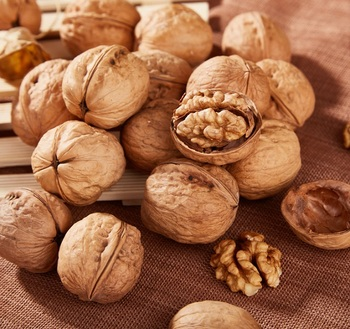 Dried Walnuts in Shell/Walnuts Kernels