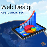 Custom B2B / B2C Website Design Services