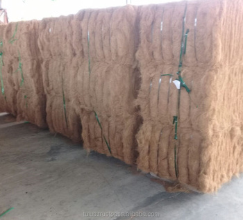 Best of Indonesia Coconut Fiber For Mattress, and For Custom Purpose