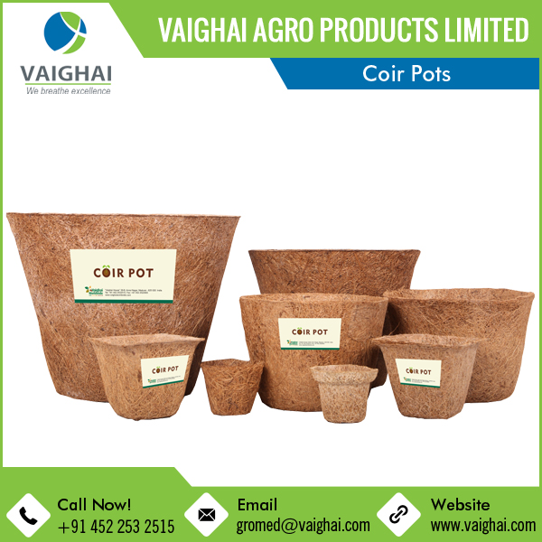 100% Natural Biodegradable Gro-Med Coir Pots