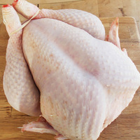 Quality -Organic High Quality halal frozen whole chicken