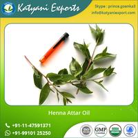 Wholesale Indian Attar Perfume Oil Henna Attar Perfume Oil