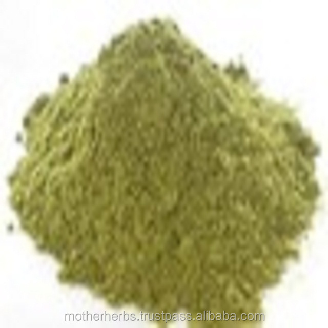 Thyme Leaves Extract / Thymus Vulgaris Leaves Extract Powder