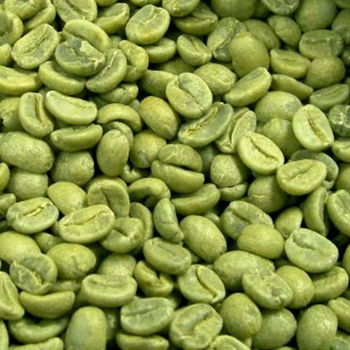 Arabica green coffee beans high quality best price supplier