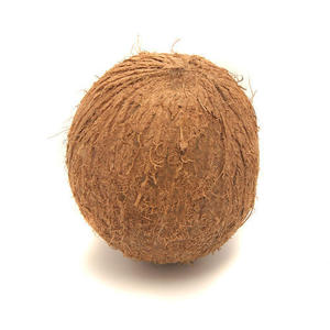 Fresh Coconut/Dried Coconut export/Mature Coconut from Vietnam