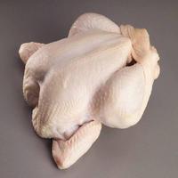 High Quality Certified HALAL Frozen Whole Chicken