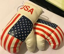 Mini Boxing Gloves Pair Rear Mirror Hanging Accessories Brutish/Pakistan Flag