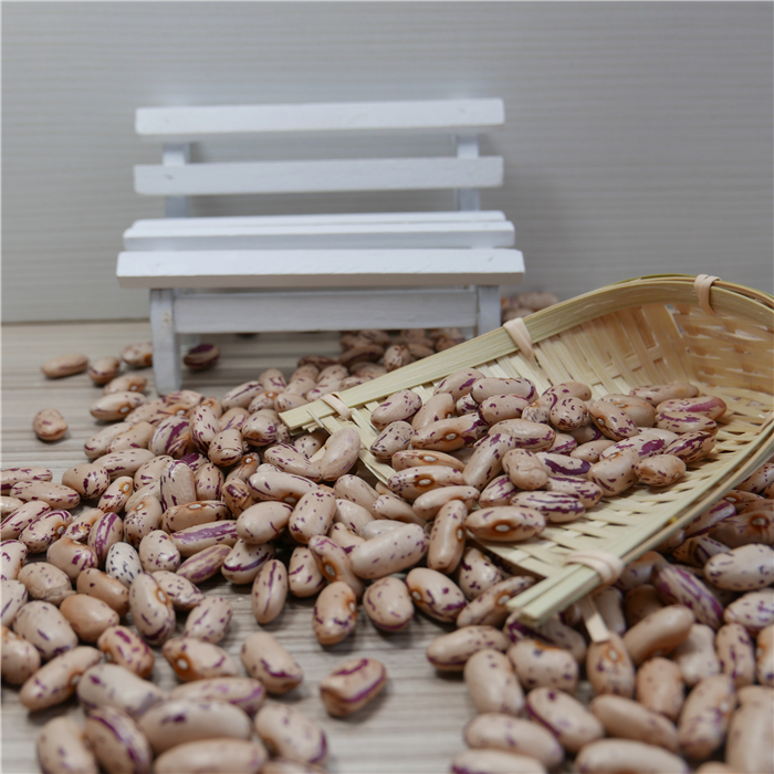 Light Speckled Kidney beans (LSKB) Pinto beans / Sugar beans