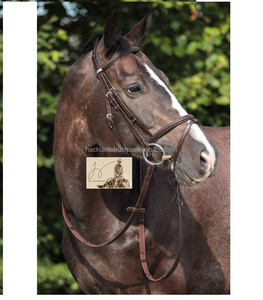 Horse bridle Wholesale Top Quality Horse Bridle Made of Genuine Leather