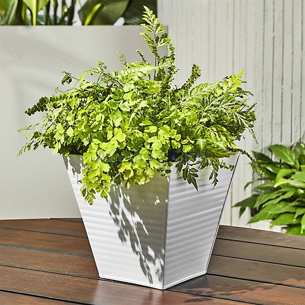 ACHIO Vietnam zinc planter, interior planters, powder coating planter planter with high quality and reasonable price