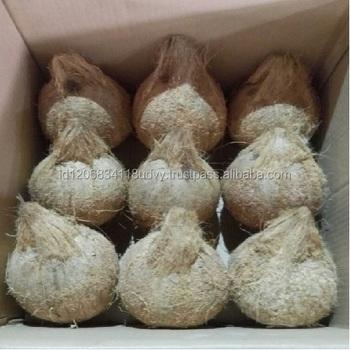 fresh coconut indonesia