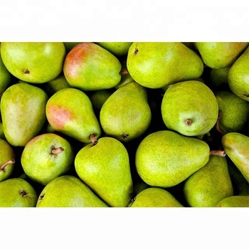 Wholesale Fresh Pear / Pear Fruit Price / Fresh Pear Fruit In India