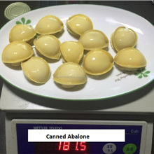 IFS Approval Canned Abalone In Brine best price