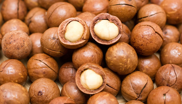 Image result for Macadamia