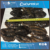Frozen sea cucumber (Cucumaria) not gutted by RED FISH Co. CUCUMARIA from Russia