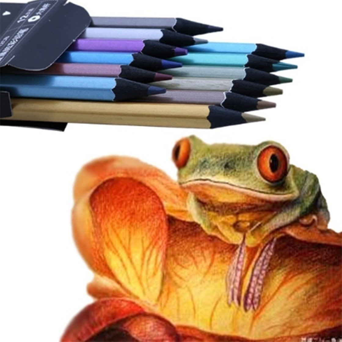 SOURBAN 12 Metallic Colored Pencil For Drawing Sketching Set Stationery