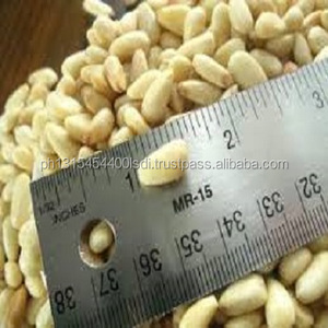 OEM packaging in small bags Siberian Cedar Pine Nuts