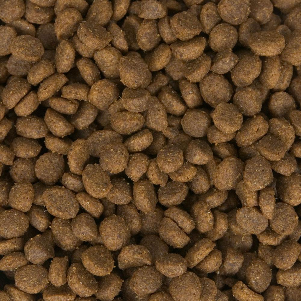Oembulk Wholesale Dog Food Cat Food Pet Food 15kg Oem Dog Dry Food