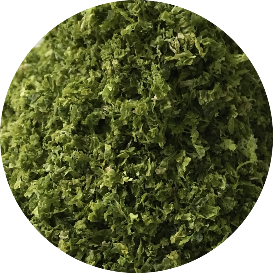 Ulva Lactuca Seaweed Powder With Large Quantity Buy Ulva