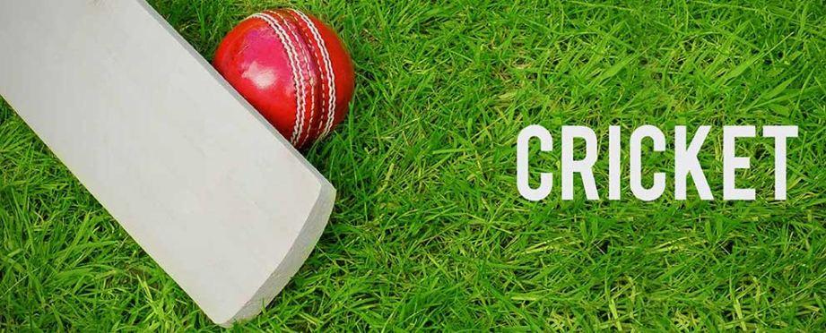 Prática Bola de Couro Cricket