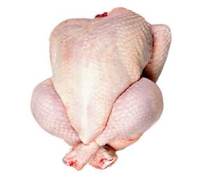 Frozen Chicken Philippines Wholesale, Chicken Suppliers